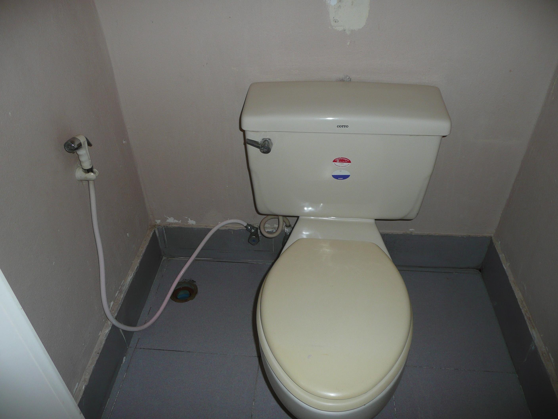 vie-wc-douchette
